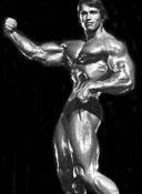 Арни Мистер Олимпия 1971