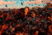 Рецензия на фильм Хоббит: Пустошь Смауга