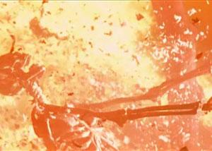 скелет в огне