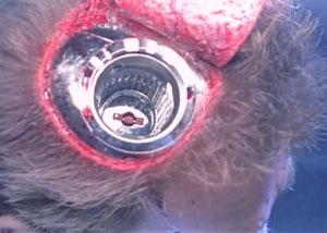 извлечение чипа из головы терминатора